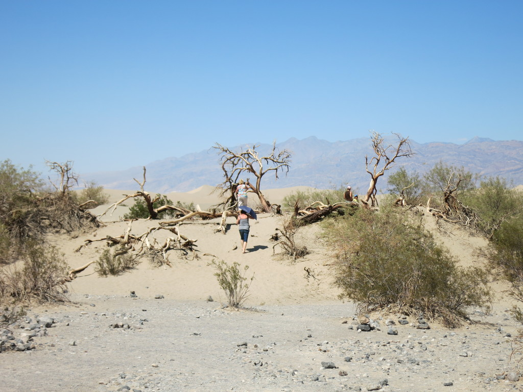 19.Death Valley