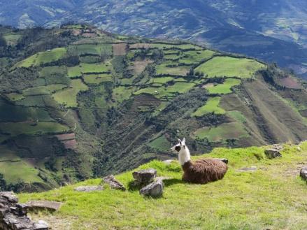 Perú 2016.JPG